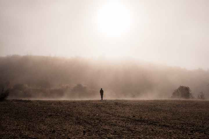 silhouette of person walking on brown field